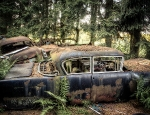 Autofriedhof_Chatillon_011